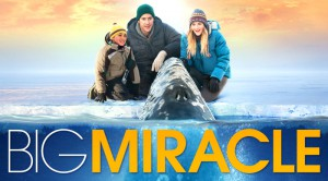 61115610_bigmiracle_800x445-thumb-800x445-24835