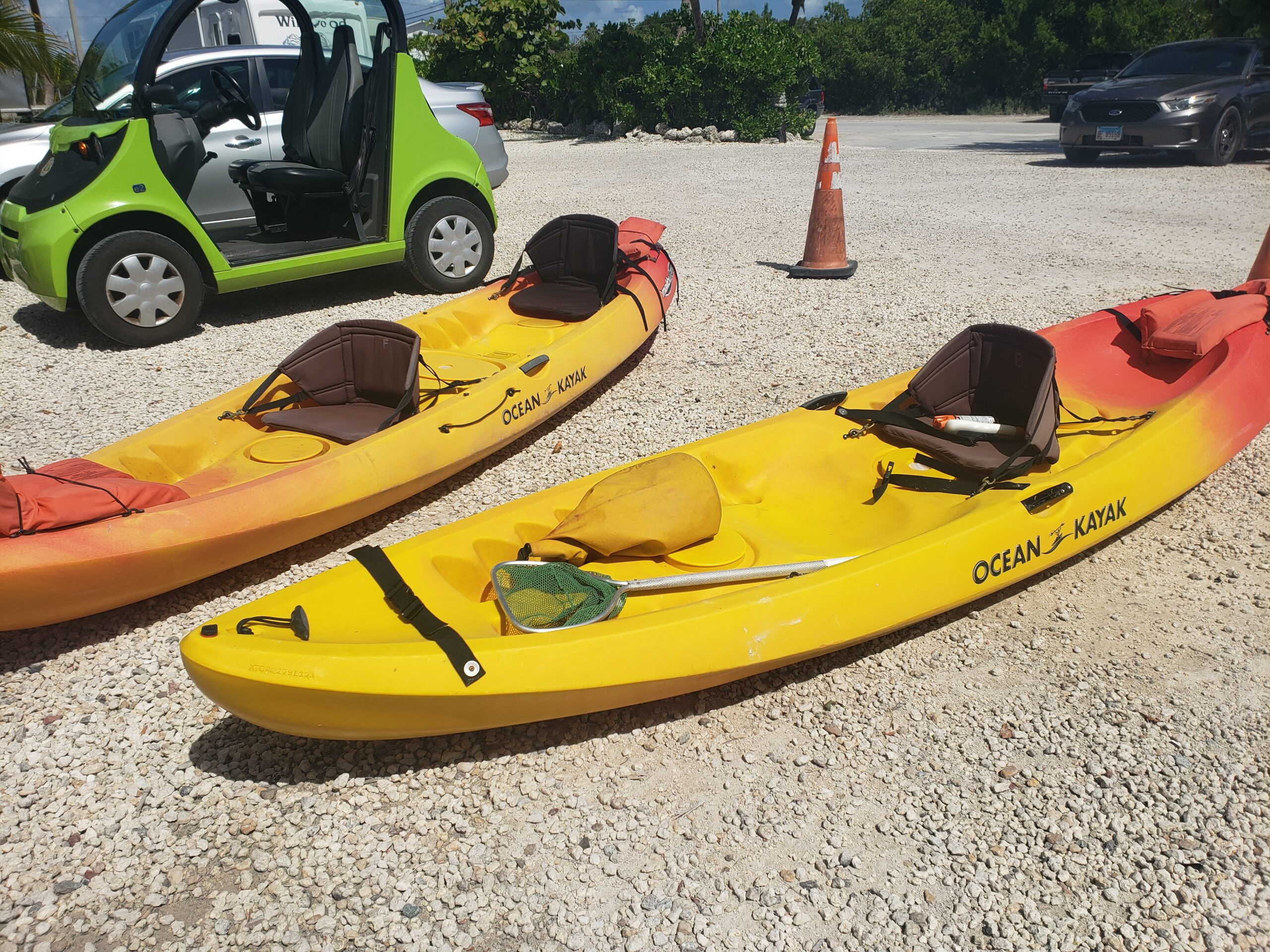 Kayak The Mangroves with Eco Tours